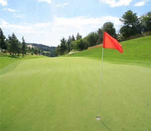 Club de Golf El Chaparral, Campo de Golf en Málaga - Andalucía