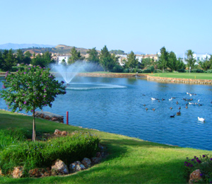 La Noria Golf Resort, Campo de Golf en Málaga - Andalucía