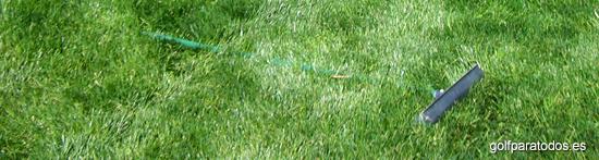 Área del campo de golf que no está segada a ras
