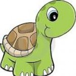 Foto del perfil de Tortuga